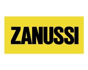 2lb93-8314ZANUSSI_logo